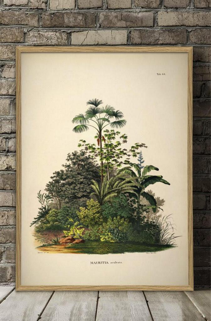 Bespoke Botanical Prints